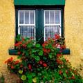 Cottage Window, Co Antrim, Ireland by The Irish Image Collection