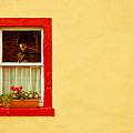 Cottage window by Tom Gowanlock