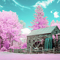 Cotton Candy Grist Mill by Brian Hale