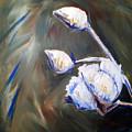 Cotton Plant 2 by Emily Martinez
