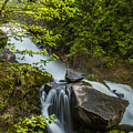 Cottonwood Falls by Joy McAdams