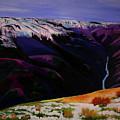 Cottonwood Idaho by Sarah Hamilton