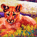 Cougar Cub by Marion Rose