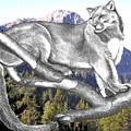 Cougar Mountain by Russ  Smith