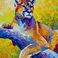 Cougar Portrait I by Marion Rose