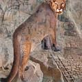 Cougar Rocks, Southwest Mountain Lion by Karla Beatty