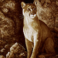 Cougar Wait Until Dark  by Frank Wilson