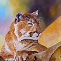Cougar Wildlife by Mary Jo Zorad
