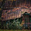 Country Barn by Doug Sturgess