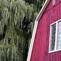 Country Barn  by Joseph C Santos