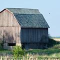 Country Barn by Linda Kerkau