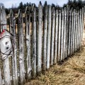 6004 - Country Fences I by Sheryl Sutter