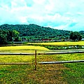 Country Field by Lorie Kash