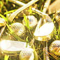 Country Golf by Jorgo Photography - Wall Art Gallery