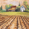 Country Harvest by Diana Miller