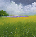 Country Landscape by Alicia Maury