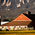 Country Living Boulder County by Marilyn Hunt