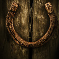 Country Luck by Jorgo Photography - Wall Art Gallery