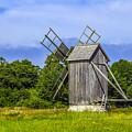 Country Mill by Roberta Bragan