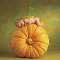 Country Pumpkin by Anne Geddes