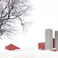 Country Red And White  by Cathy Beharriell