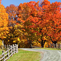 Country Road Autumn by Alan L Graham