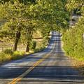 Country Road by Frank Garciarubio