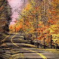Country Road In Autumn by Michael Forte
