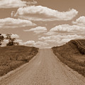 Country Road by Joni Moseng