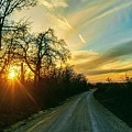 Country Road Please Take Me Home by Tammy Reynolds