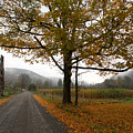 Country Road by Robert Och