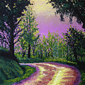 Country Road by Stan Hamilton