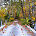 Country Road by Todd Hostetter