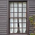 Country Window by Jost Houk