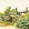 Countryside by Morgan Fitzsimons