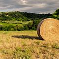 Countryside Of Italy 3 by Andrea Mazzocchetti