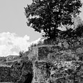 Countryside Of Italy Bnw 2 by Andrea Mazzocchetti