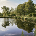 Countryside Park Pond by Sophie McAulay