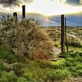 Countryside Sunset by Blake Richards