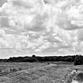 Countryside Views 1 by Jonathan Garrett