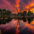 County Farm Sunset by Scott Thorp