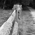 County Fence  by D R TeesT