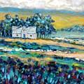 County Wicklow - Ireland by John  Nolan