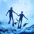 Couple At The Surface by Ed Robinson - Printscapes