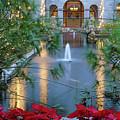 Courtyard Garden by D Hackett