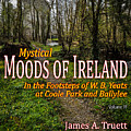 Cover Of Vol. 4 - Mystical Moods Of Ireland by James Truett
