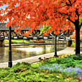 Naperville Riverwalk Covered Bridge by Christopher Arndt