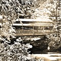 Covered Bridge At Lanterman's Mill Black And White by Lisa Wooten