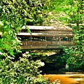 Covered Bridge At Lanterman's Mill by Lisa Wooten