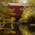 Covered Bridge by James Holt